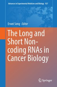 The Long and Short Non-coding RNAs in Cancer Biology