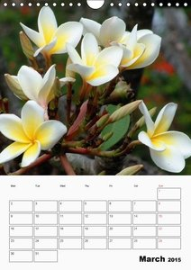 Tropical Flowers (Wall Calendar 2015 DIN A4 Portrait)