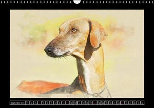 Sighthounds 2016 (Wall Calendar 2016 DIN A3 Landscape)