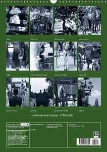Le Monde des Courses ATTELAGE (Calendrier mural 2015 DIN A3 vert