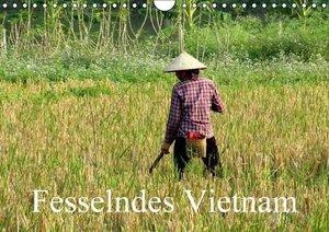 Fesselndes Vietnam (Wandkalender 2016 DIN A4 quer)