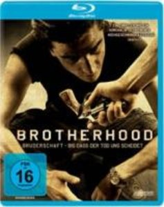 Brotherhood. Steelbook