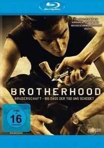 Brotherhood. Steelbook