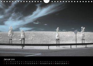 Infrarot-Fotografie 1 (Wandkalender 2016 DIN A4 quer)