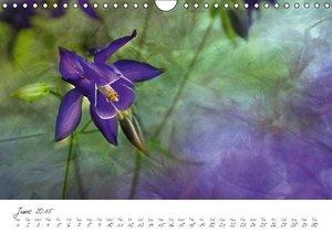 Floraisons (Wall Calendar 2015 DIN A4 Landscape)