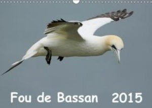 Wolf, G: Fou De Bassan (Fr-Version)