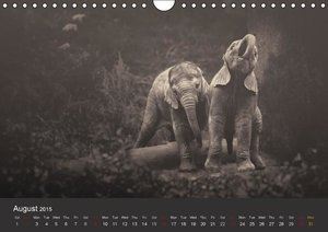 African Souls African animals with soul (Wall Calendar 2015 DIN