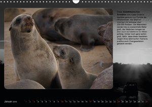 Wilde Tiere neu entdeckt (Wandkalender 2016 DIN A3 quer)