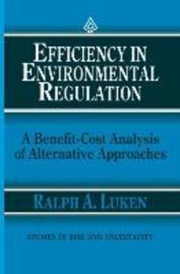 Efficiency in Environmental Regulation