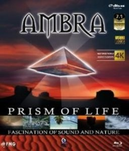 Prism Of Life