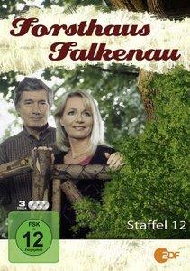 Forsthaus Falkenau St.12 (Amaray)