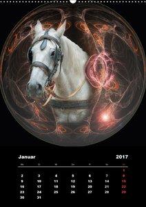 Pferdezauber - eingefangen in magischen Kugeln