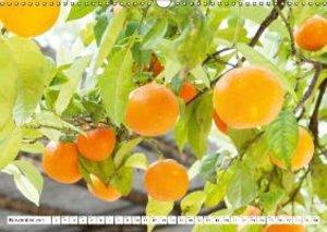 Emotional Moments: Oranges & Lemons. / UK-Version (Wall Calendar