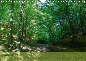 Nature On Trail (Wall Calendar 2015 DIN A4 Landscape)