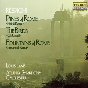 Pinien Von Rom