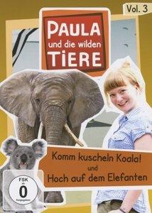 Paula und die wilden Tiere 03: Komm kuscheln Koala! / Hoch auf d