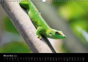 Tschope, F: Wildlife Calendar / UK-Version