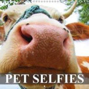 Pet Selfies (Wall Calendar 2015 300 × 300 mm Square)
