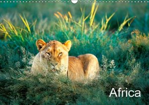 Africa (Wall Calendar 2015 DIN A3 Landscape)