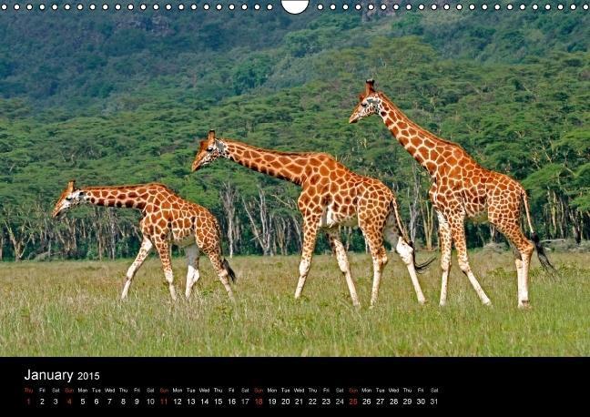 Africa (Wall Calendar 2015 DIN A3 Landscape) - zum Schließen ins Bild klicken