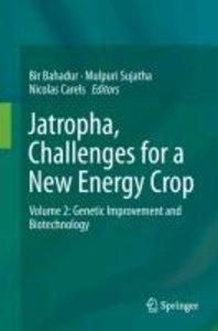 Jatropha, Challenges for a New Energy Crop 2