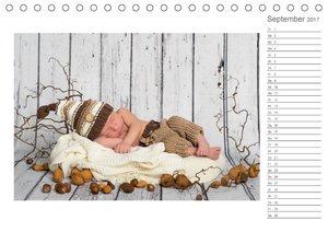 Aller Anfang ist klein - Babykalender mit Noah (Tischkalender 20