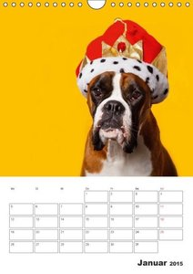 Mielke, K: colorful world of boxer 2015 (Wandkalender 2015 D