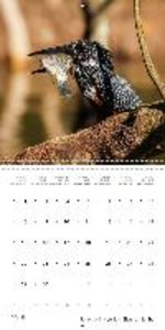 Adventure South Africa 2015 (Wall Calendar 2015 300 × 300 mm Squ