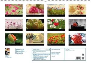 Rosen und Mohnblüten Momente mit österreichischem Kalendarium (A