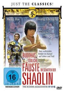 Buddhas tödliche Fäuste im Schatten der Shaolin