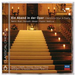 Ein Abend in der Oper