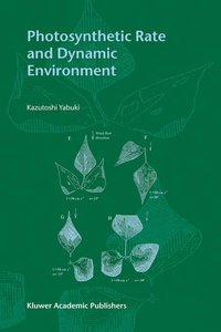 Photosynthetic Rate and Dynamic Environment