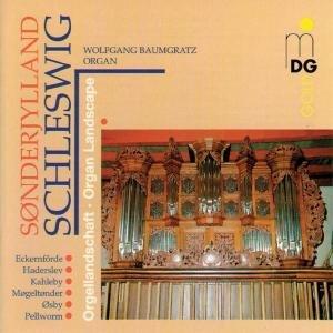 Orgellandschaft Schleswig