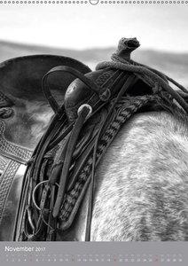 Passion Pferde - Impressionen