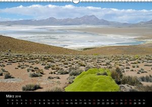 El Norte de Chile - Nordchile (Wandkalender 2016 DIN A3 quer)