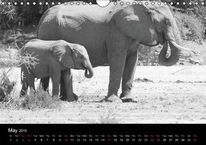 Elephants - Grey giants (Wall Calendar 2015 DIN A4 Landscape)