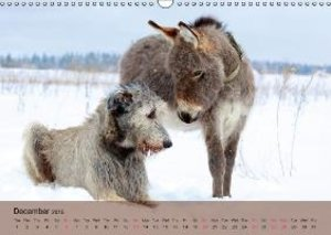 Little Donkey with Friends (Wall Calendar 2015 DIN A3 Landscape)