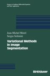 Variational Methods in Image Segmentation