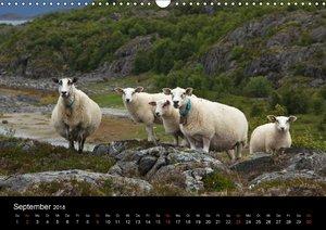 Norwegen - Faszination des Nordens