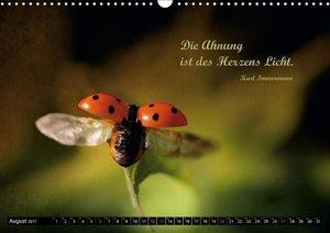 Das kleine, große Glück (Wandkalender 2017 DIN A3 quer)
