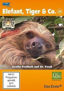 Elefant, Tiger & Co. 34. Große Freiheit auf St. Fauli