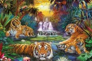 Tiger am Wasserloch. Puzzle 3000 Teile