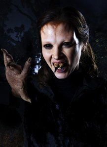 Grimm-Staffel 1