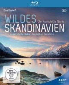 Wildes Skandinavien (Blu Ray)