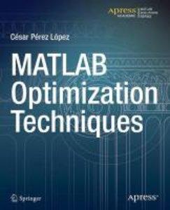 MATLAB Optimization Techniques