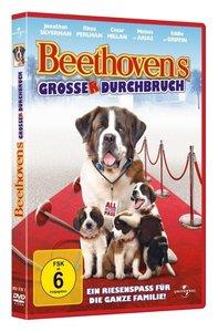 Beethoven 6 - Beethovens großer Durchbruch