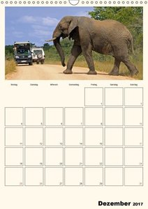 Krüger Nationalpark Südafrika (Wandkalender 2017 DIN A3 hoch)