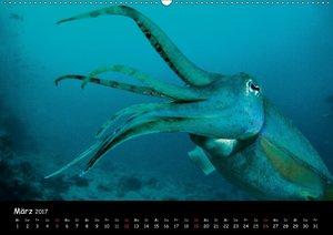Die Welt unter Wasser