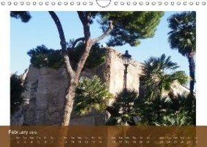 Trees, Beloved of the Mediterranean Sun (Wall Calendar 2015 DIN