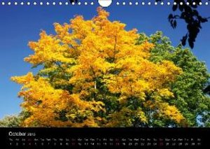 golden October / UK-Version (Wall Calendar 2015 DIN A4 Landscape